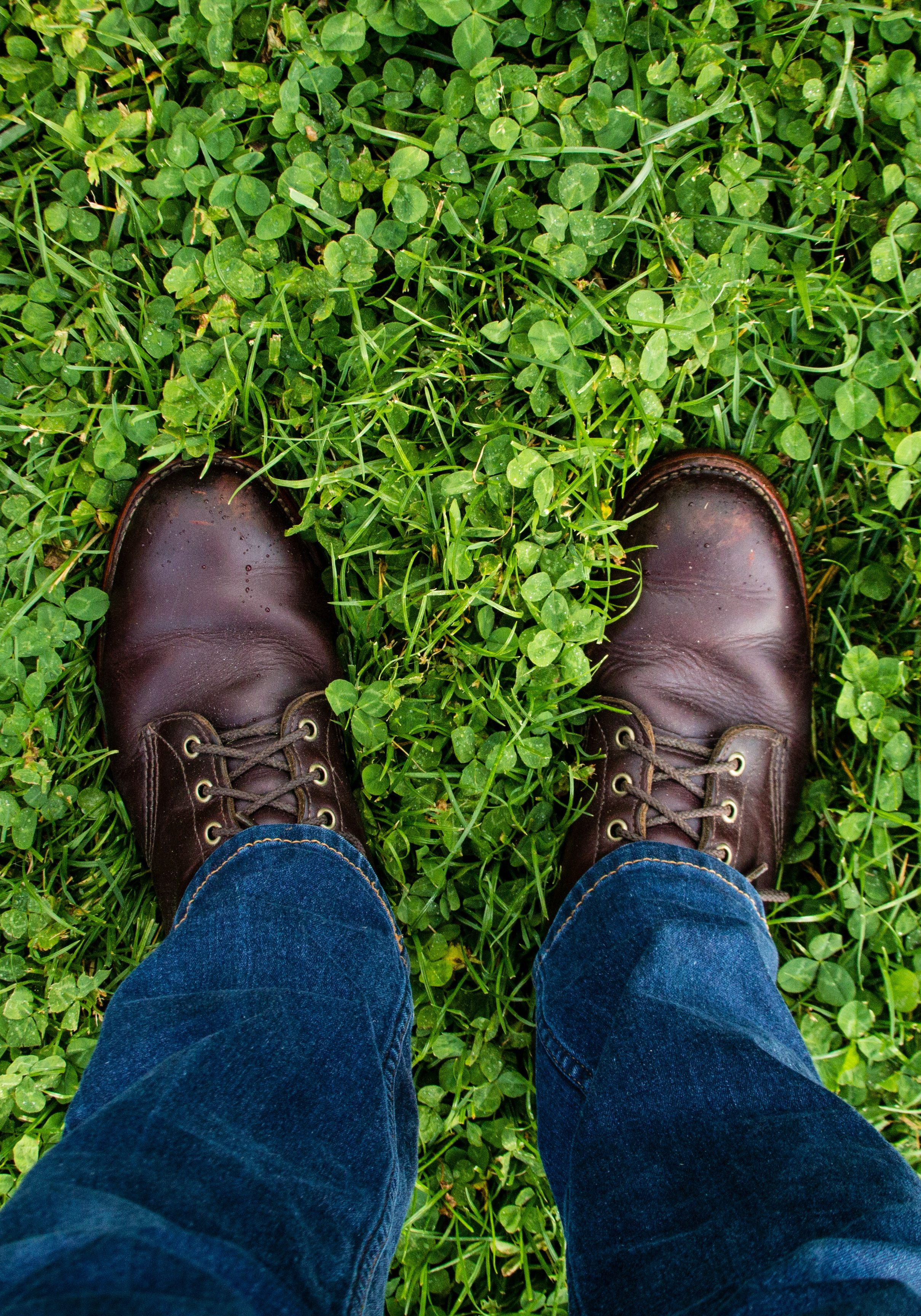 Brown Shoes on Green Clover Grass